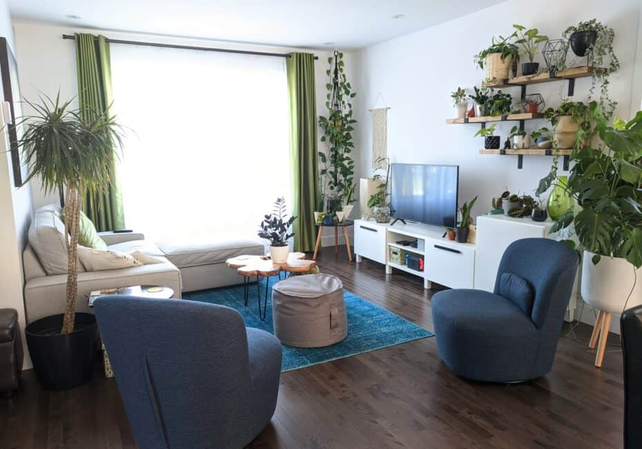 gray sofa chair near green potted plant